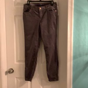 Valore gray white house black market Skimmer pants